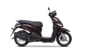 Yamaha Delight Magnetic Bronze
